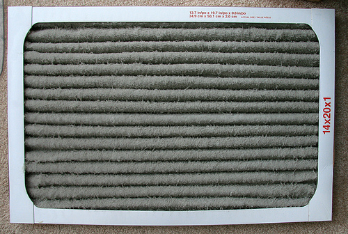 Free Tip Clean your filter